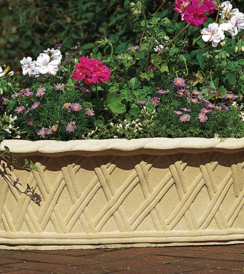 Plaited Trough