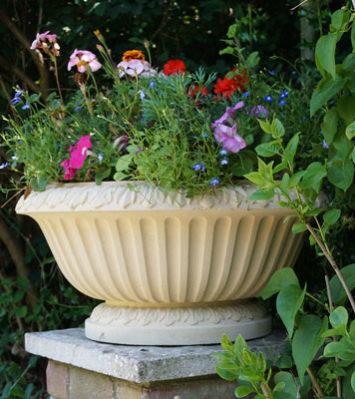 Maidford Bowl