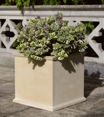 Box Planter - Medium