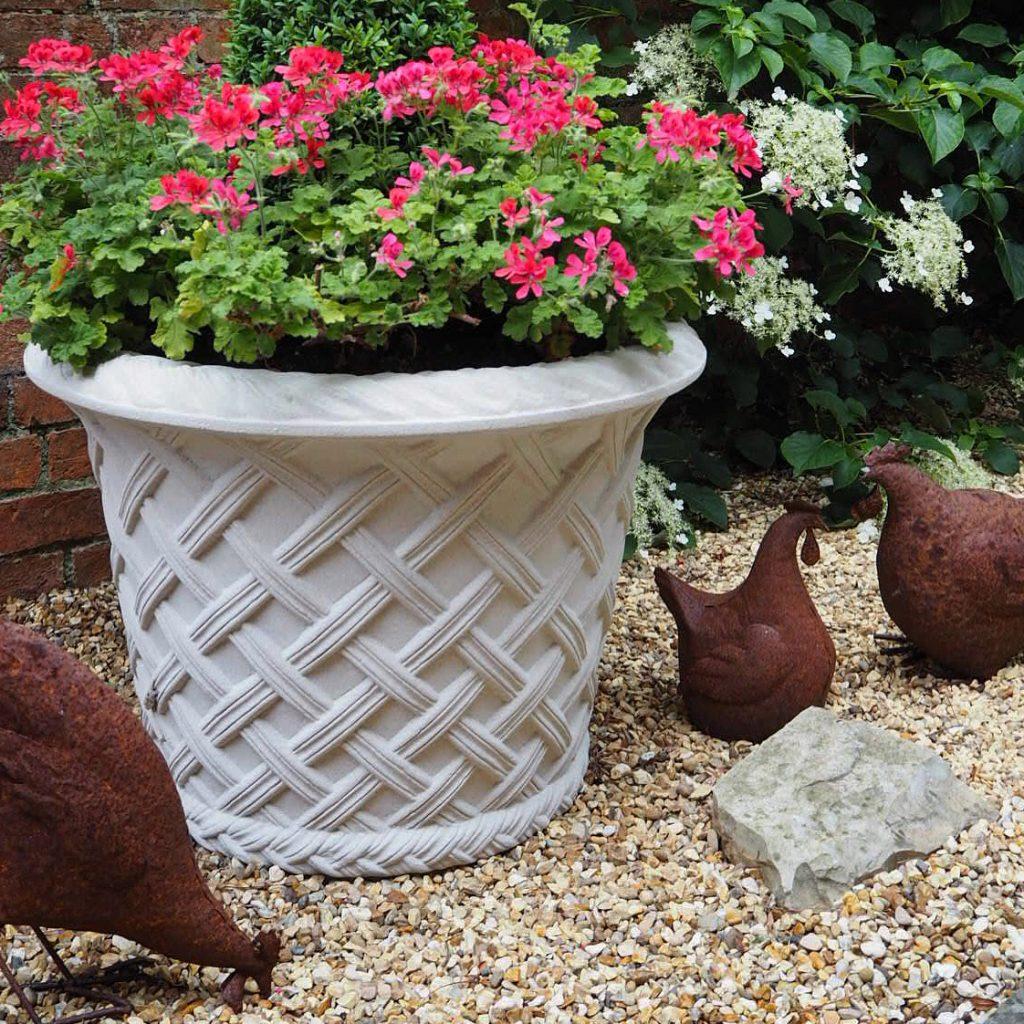 katy smith's hens pose with the haddonstone elizabethan jardiniere