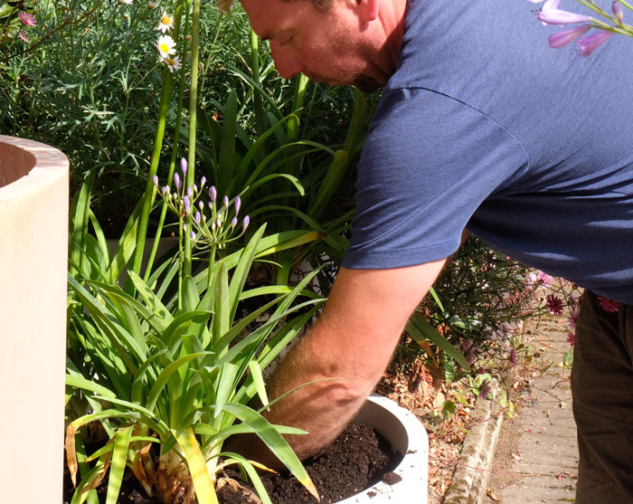 Andy Miller planting the Small Crucible Planter