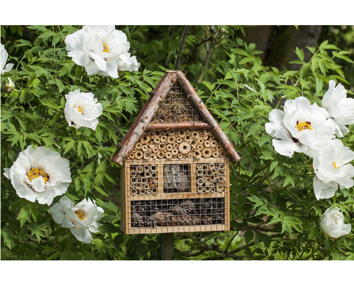 an insect house to encourage native wildlife