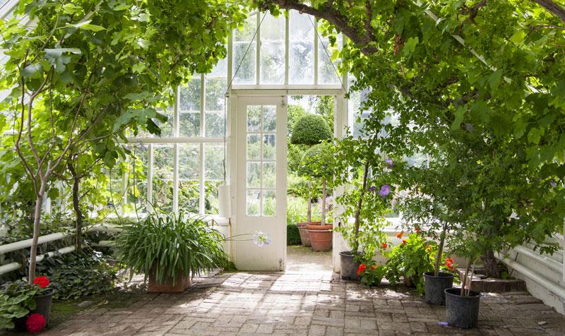 classic greenhouse - design an english garden