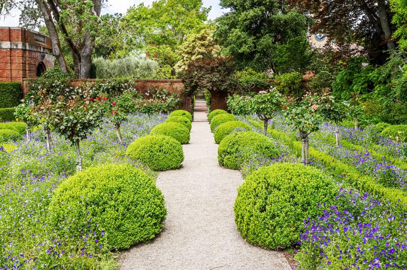 buxus topiary balls - english garden ideas