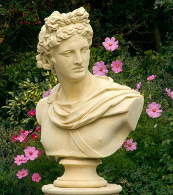 Apollo Belvedere bust