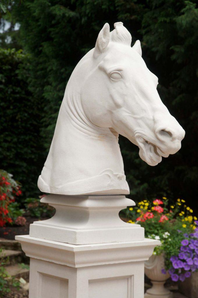 Equine Head
